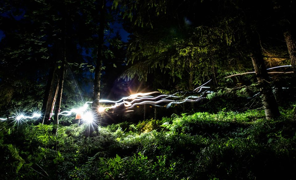 A picture from the forest during the night relay.